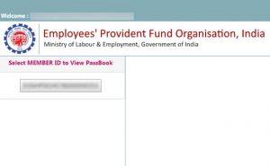 Employee Provident Fund Balance Page